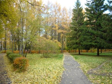Осенняя аллея в парке СХИ